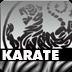 Karate und Kampfkunst