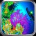 珊瑚海-绿豆动态壁纸