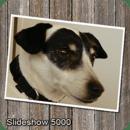 SlideShow5000 FREE