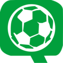 华球网logo图标