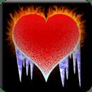 火与冰的心电池2×2
