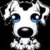 看护狗V1.1