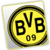 Unoffical BVB Widget