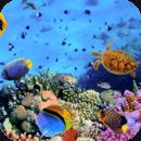 动态壁纸3D-水族馆
