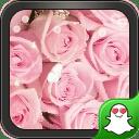 粉色玫瑰-绿豆秀秀动态壁纸