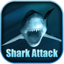 鲨鱼攻击动态壁纸 最新3.33版本
