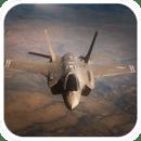 F-35 Lightning II Simula...