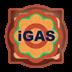 iGas-爱瓦斯 瓦斯派送系统