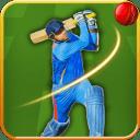 Real Cricket 2015