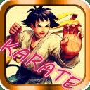空手道搏击格斗 - 史上最经典肉搏格斗街机游戏