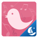Pink Bird Boat Browser T...