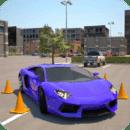 驾校3D停车