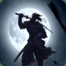Shadow Shogun