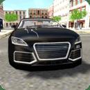 Luxury City Car