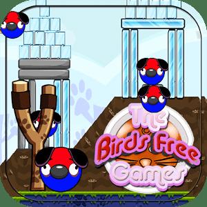 鸟免费游戏