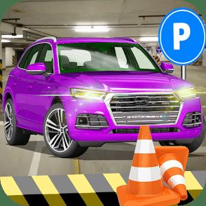 汽车 真实 停车处 专家