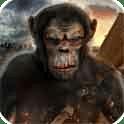 猿人的生存法则