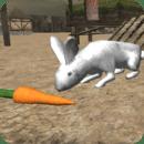 真正的兔子模拟器
