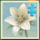 心灵花园:鲜花 扩展包