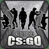 Guide for CS GO