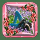 美丽的花朵相框