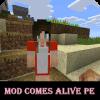 MOD Comes Alive PE