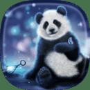 熊猫 动态壁纸