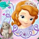 苏菲公主大明星