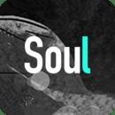 Soul-跟随灵魂找到你