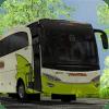Skin Bus Shantika