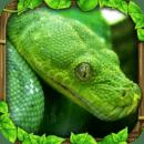 3D蟒蛇模拟