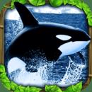 究极虎鲸模拟器