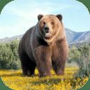 3D狗熊模拟