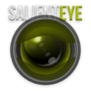 """Salient Eye"" 家庭警报安全系统"
