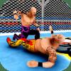 Cage wrestling Champion Revolution World