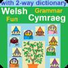 Grammar Fun Welsh Cymraeg