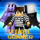 像素枪手 (Pixel Gunner)