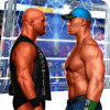 Pro Wrestling Superstar Fight - Wrestling Games