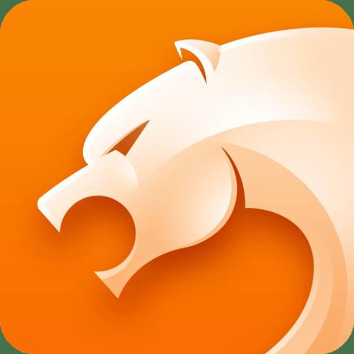 猎豹浏览器