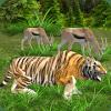 Wild Simulator