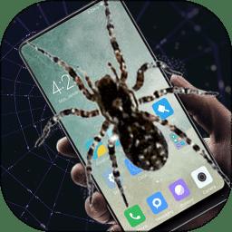 蜘蛛恶作剧