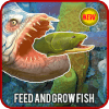 Feed and Grow : Simulator Fish