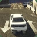 Car Parking - Realistic Driver