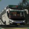Livery ES Bus Simulator ID