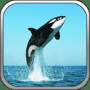 我的世界海洋公园VR