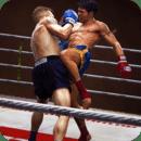 拳击明星3D