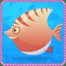 大鱼吃小鱼精装版