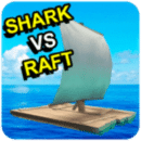 Shark vs Raft