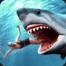 鲨鱼攻击完美版