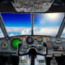 飞行员的飞机模拟器